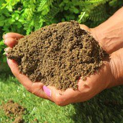 Low Fertility Soil from MCM