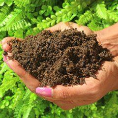 Mill Farm Topsoil from MCM