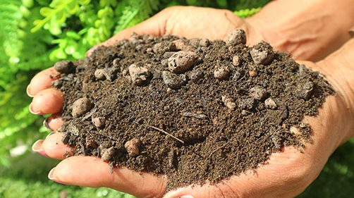 Lightweight Soil Suppliers Uk Green Roof Substrate Soil
