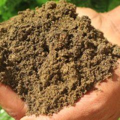 TruGrow Topsoil from MCM