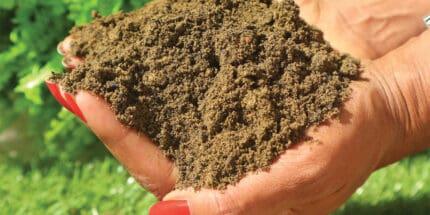 MCM BS3882 Topsoil