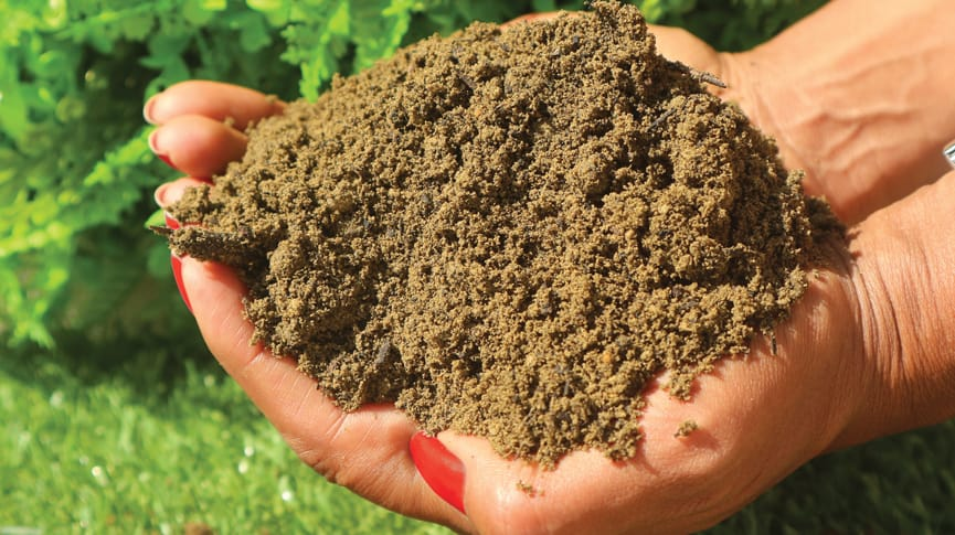 MCM Low Fertility Topsoil