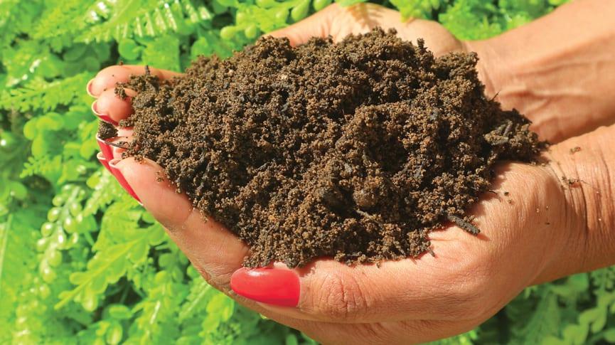 MCM Premium Topsoil
